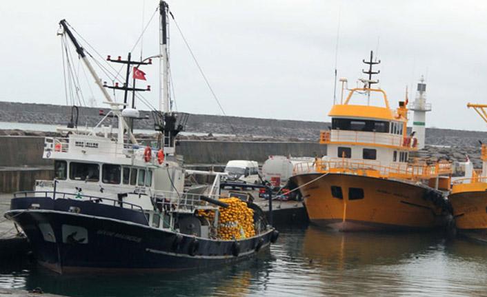 Karadeniz'deki 2 balık türünde hastalık yapan parazit tespit edildi