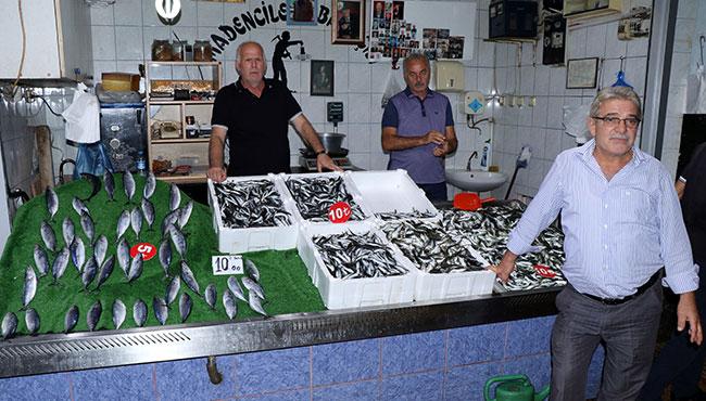 Balık bereketi... İşte fiyatlar...