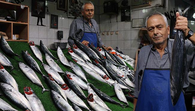 Balık fiyatlarında son durum...
