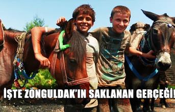 İşte Zonguldak'ın saklanan gerçeği!