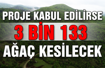 Proje kabul edilirse, 3 bin 133 ağaç kesilecek...