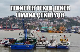 Tekneler teker teker limana çekiliyor...