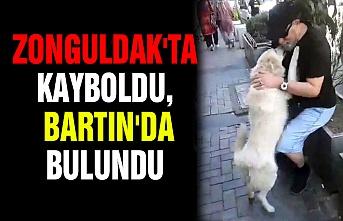 Zonguldak'ta kayboldu, Bartın'da bulundu
