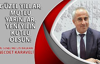 İl Genel Meclisi Başkanı Necder Karaveli'nin yılbaşı mesajı