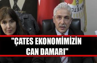 """""""ÇATES ekonomimizin can damarı"""""""