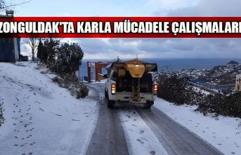 Zonguldak'ta karla mücadele çalışmaları