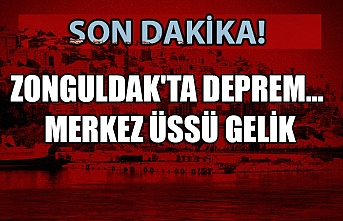 Zonguldak'ta deprem... Merkez üssü gelik