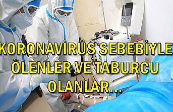 Koronavirüs sebebiyle ölenler ve taburcu olanlar...