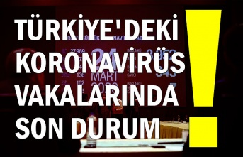 Türkiye'deki koronavirüs vakalarında son durum!