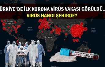 Türkiye'de ilk korona virüs vakası görüldü... Virus hangi şehirde?