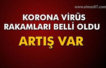 Korona virüs rakamları belli oldu. Artış var