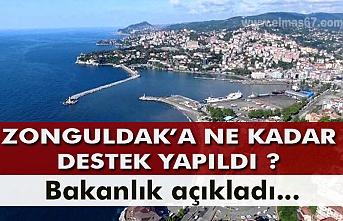 Zonguldak'a ne kadar destek yapıldı? Bakanlık açıkladı...