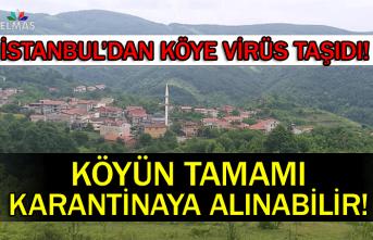 İstanbul'dan köye virüs taşıdı!