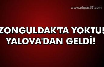 Zonguldak'ta yoktu! Yalova'dan geldi!