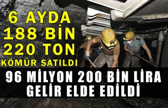 6 ayda 188 bin 220 ton kömür satıldı, 96 milyon 200 bin lira gelir elde edildi