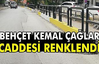 Behçet Kemal Çağlar Caddesi renklendi.