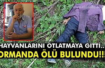 Hayvanlarını otlatmaya gitti... Ormanda ölü bulundu!!!