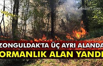 Zonguldak'ta üç ayrı alanda ormanlık alan yandı