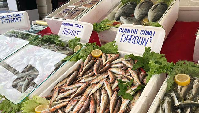 Balık fiyatları el yakıyor...