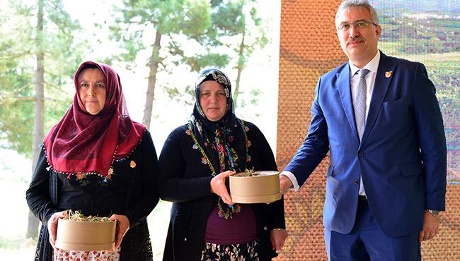 Osmanlı Çileği'ne çelik koruma
