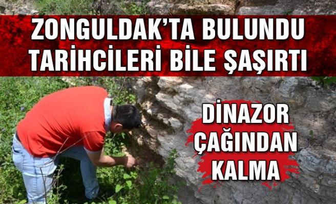 Zonguldak'ta bulundu, tarihçileri bile şaşırttı