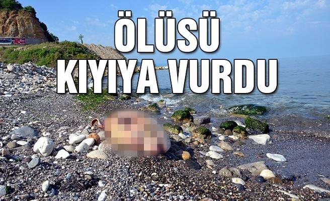 Ölüsü kıyıya vurdu