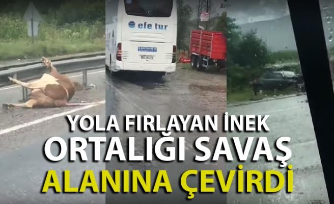 Bartın'da yolcu otobüsü ineğe çarptı