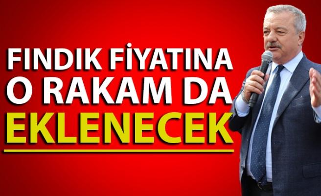 Milletvekili Türkmen'den fındık fiyatı açıklaması