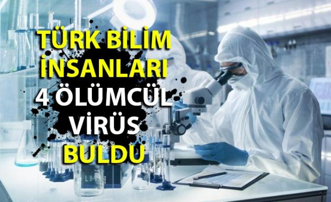 Türk bilim insanları 4 ölümcül virüs buldu! Zonguldak ve Bartın'da da var