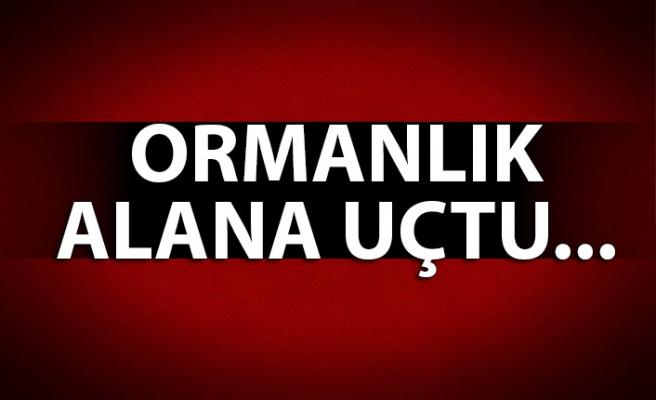 ORMANLIK ALANA UÇTU...