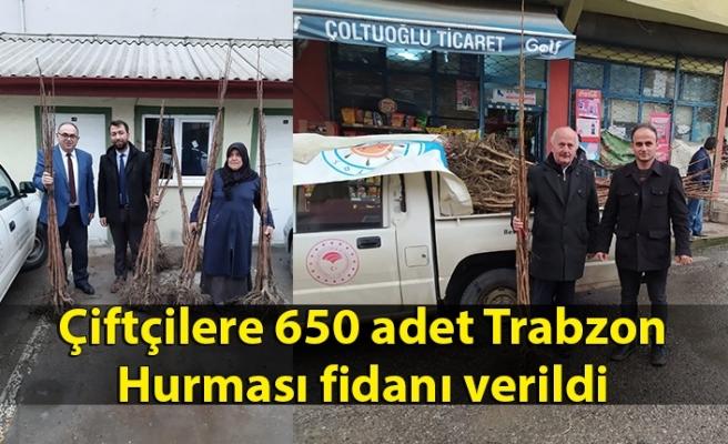 Çiftçilere 650 adet Trabzon Hurması fidanı verildi