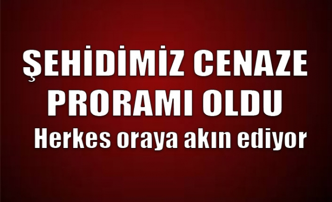Zonguldak şehidine ağlıyor... Cenaze programı belli oldu