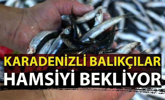 Karadeniz'li balıkçılar hamsiyi bekliyor