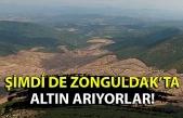 Kanadalı şirketin Zonguldak'ta çevre talanı