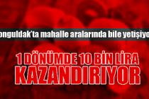 Zonguldak tarımında yüksek kazanç imkanı