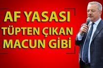 Polat Türkmen'den af yasası açıklaması