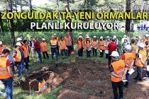 Silvikültür Planları da Yenilenecek