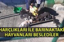 Öğrenciler harçlıklarını toplayarak barınaktaki hayvanları beslediler
