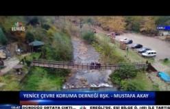 Yenice Platformu Başkanı Mustafa Akay Telefon Bağlantısı