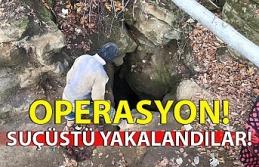 Zonguldak'ta kaçak kazı operasyonu: 5 gözaltı