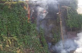 Hastane yolunda yangın... Sarmaşıklar alev aldı...