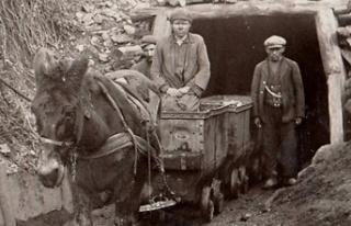 Bu emek şehrinin katırları bile madenci!