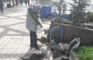 Emekli maaşıyla hem evine hem de sokak kedilerine...