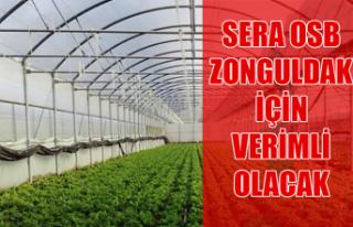Sera OSB Zonguldak için verimli olacak