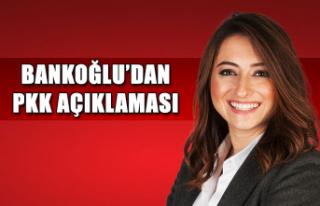 Bankoğlu'dan PKK açıklaması ...