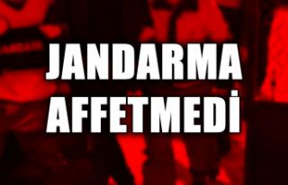 Jandarma affetmedi...