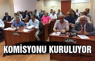 Komisyonu kuruluyor