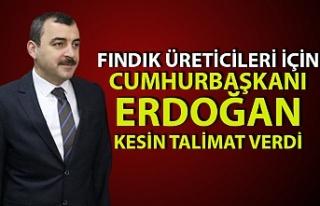 AK Parti milletvekilleri fındık üreticisi için...