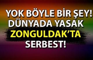 Dünyada yasak Zonguldak'ta serbest! Yok böyle...