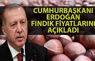 Fındık fiyatları Cumhurbaşkanı Erdoğan tarafından...